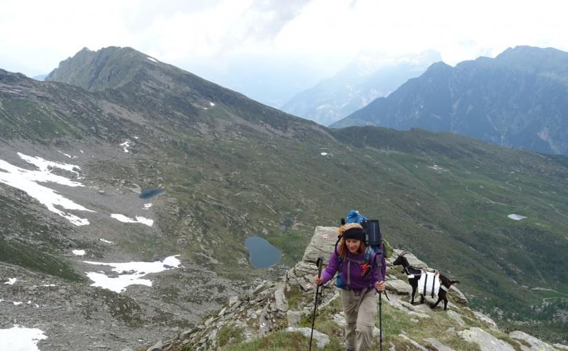 Tag 33: Alpe di Lago – Capanna Cava – Piöv di Fuori
