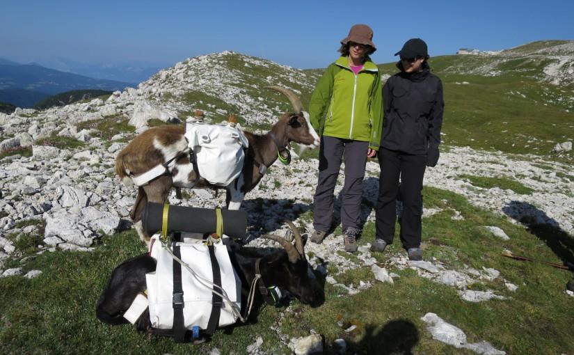 Tag 59: mit Ingrid und Julia in den Dolomiten
