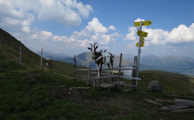 Tag 85: Falkert – Priesshütte – Pregatscharte