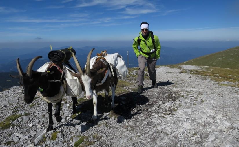 Tag 115: mit Gregor am Schneeberg