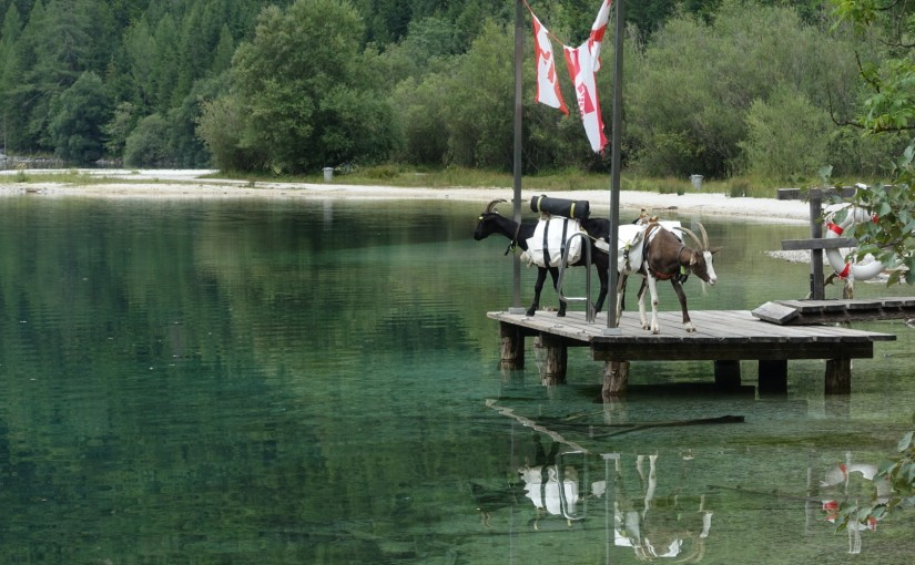 Tag 105: Eisenerz – Leopoldsteiner See
